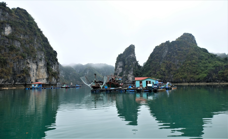 Vung Vieng