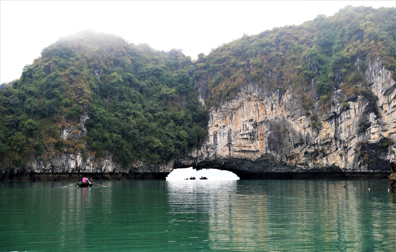 Bai Tu Long